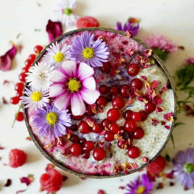 Chia Pudding with beet powder and butterfly pea flower, gluten-free and vegan.